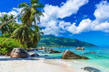 Fototapeta Baie Beau Vallon - Beach on island Mahe in Seychelles
