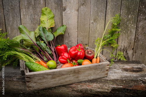 Poster Fruit vegetables in a box in the garden