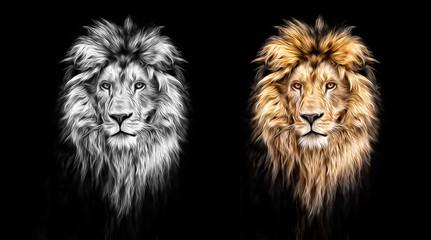 Fototapeta Lew Portrait of a Beautiful lion, lion in the dark, oil paints
