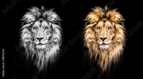 Fototapety, obrazy: Portrait of a Beautiful lion, lion in the dark, oil paints