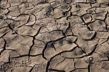 California Drought: Ffects Of ...