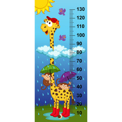 Fototapetagiraffe height measure(in original proportions 1:4) - vector illustration, eps