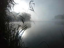 The Fog On A River