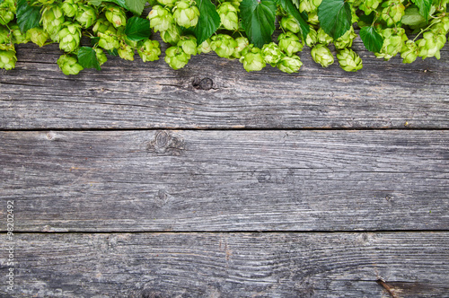 Fotografía  Wooden background with fresh green hop frame