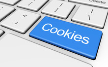 Website Cookies Concept