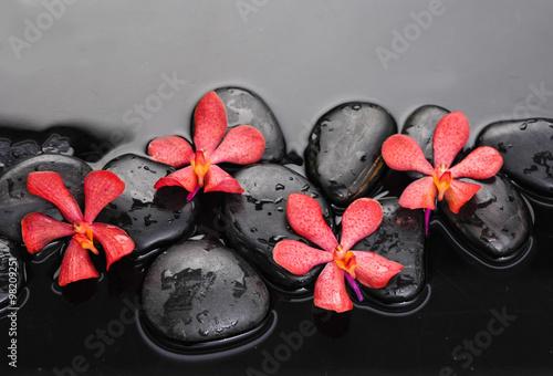 piekna-czerwona-orchidea-z-terapia-kamieniami