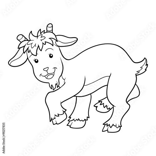 Tuinposter Doe het zelf Coloring book (goat)