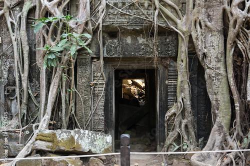 Foto op Plexiglas Bedehuis Ta Prohm temple