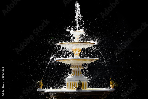 Isolated splash fountain Canvas