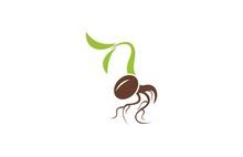 Organic Plant Seeds Logo