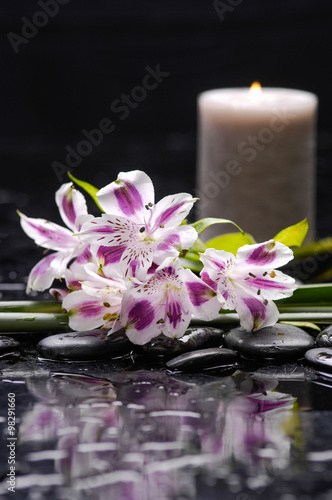 Poster Spa Beautiful orchid with candle and therapy stones