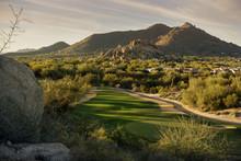Arizona Desert Landscape Scene,Scottsdale,AZ