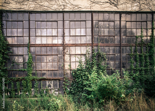 Staande foto Industrial geb. Grungy old industrial exterior with windows and overgrown vines and weeds