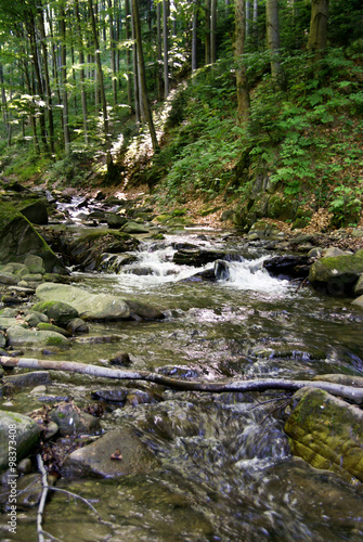 Fototapety, obrazy: strumień górski