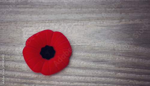 Ingelijste posters Poppy Remembrance Day poppy