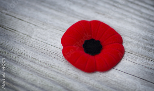 Poster de jardin Poppy Remembrance Day poppy