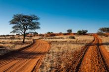Sandpiste In Der Kalahari, Namibia, Abendstimmung
