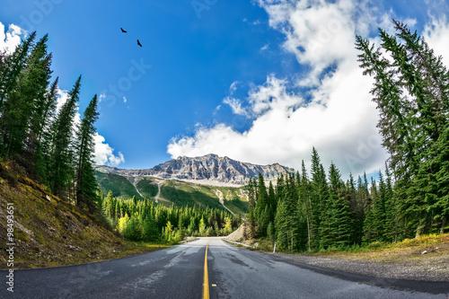 malownicza-droga-w-parku-narodowym-yoho