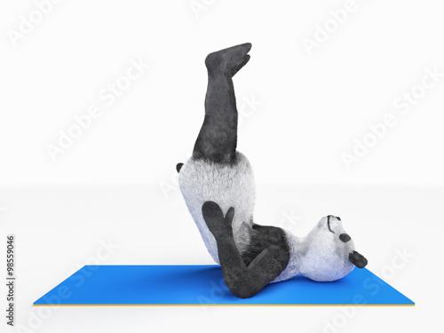 Fotografie, Obraz  Personage character animal bear panda yoga stretching exercises different postur
