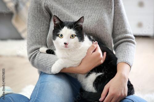 Лечение поноса у кошек в домашних условиях чем