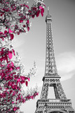 Fototapeta Wieża Eiffla - infrared photography Eiffel Tower