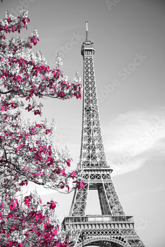 Poster Tour Eiffel infrared photography Eiffel Tower