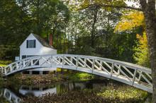 Footbridge In An Autumn Forest