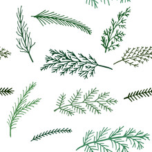 Seamless  New Year And Winter Pattern  Background Spruce Twigs On A White Background