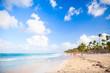 Coastal Caribbean landscape. Sandy beach view