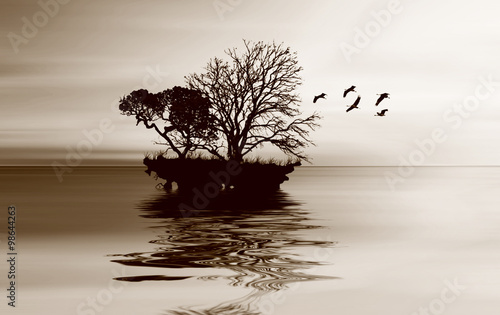 Obraz w ramie Abstract black and white landscape.