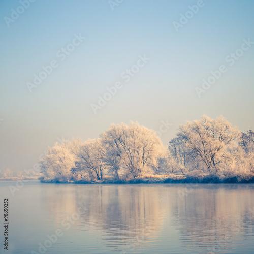 Foto op Aluminium Blauw Snow covered trees, winter landscape