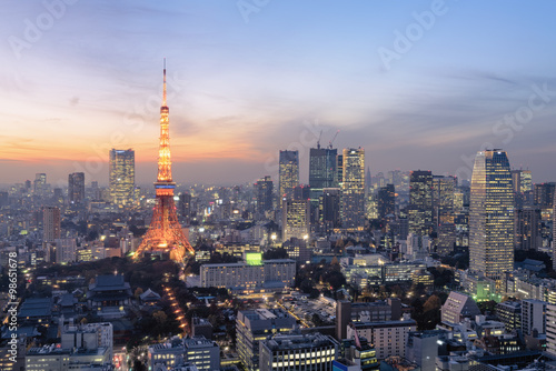 Tuinposter Tokio Night view of Tokyo Skylines.Tokyo is both the capital and largest city of Japan. The Greater Tokyo Area is the most populous metropolitan area in the world.