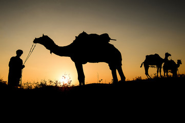 Silhouette of the Camel Trader crossing the sand dune during sun