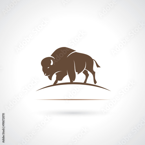 Cuadros en Lienzo Bison label