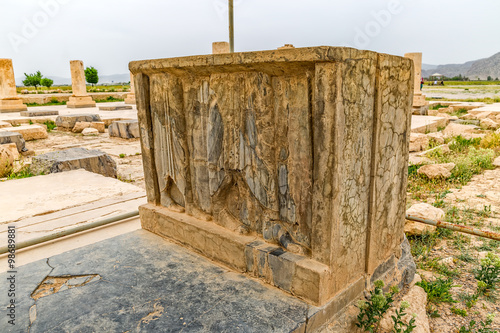 Foto op Plexiglas Artistiek mon. Pasargadae relief remains
