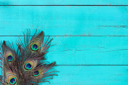 Blank rustic antique teal blue wood sign with peacock feathers