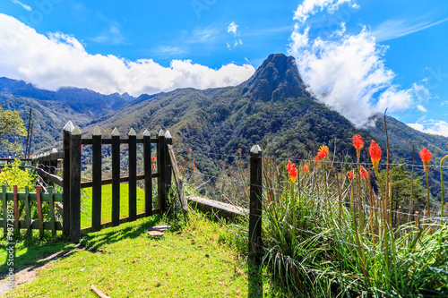 Fotografía  the gate to the top of the mountain, cocora valley, colombia, mountain top view,