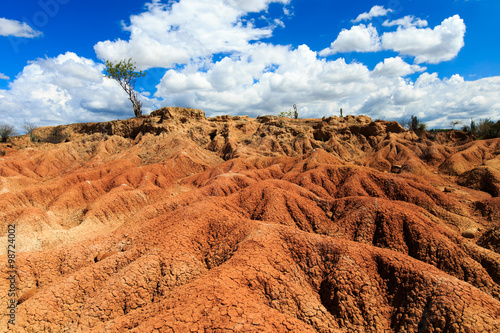 Papiers peints Orange eclat big cactuses in red desert, tatacoa desert, columbia, latin america, clouds and sand, red sand in desert, landscape patterns