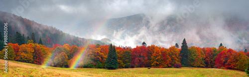 Aluminium Prints Autumn Misty autumn Transcarpathia
