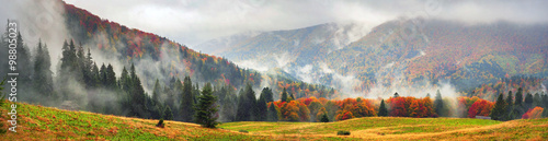 Photo Stands Autumn Misty autumn Transcarpathia