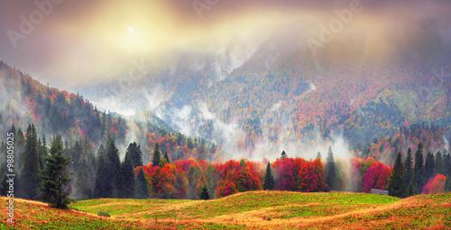 Foto op Canvas Bergen Misty autumn Transcarpathia