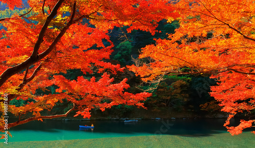 Cadres-photo bureau Rouge Autumn Colours in Kyoto