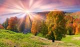 Fototapeta Natura - Autumn on the pasture