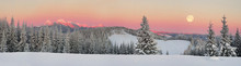 Ukrainian Carpathians Snowy Fo...