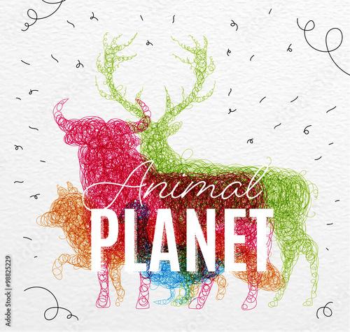 Fototapeta  Poster animal planet tangled