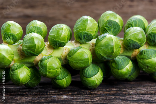 Photo Stands Brussels close up Sprouts on the stalk
