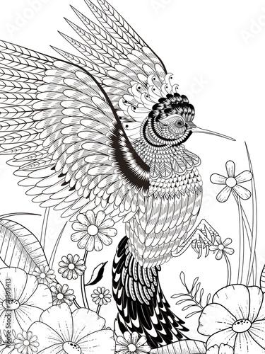 lovely hummingbird coloring page – kaufen Sie diese ...