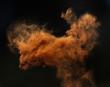 Leinwandbild Motiv Ginger cloud of a magic dust