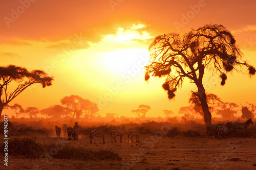 Foto op Canvas Afrika African sunset