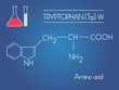 vector Tryptophan amino acid formula with test tubes on blue background